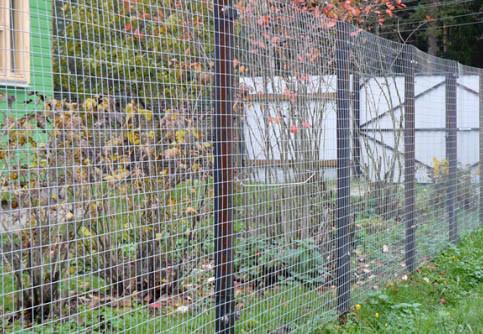 Забор из сварной сетки с металлическими столбами