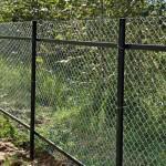 Фото заборов из сетки рабицы