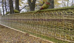 плетеный забор фото